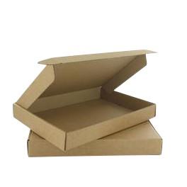 Hildebrand Brievenbusdoosjes / Postdoosjes A4 formaat 310x220x20mm, A-Kwaliteit Wit, doos à 100 stuks